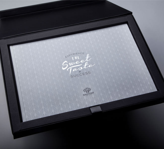 special box packaging for Amanora township brochure
